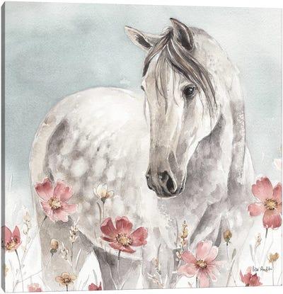 Wild Horses IV Canvas Art Print