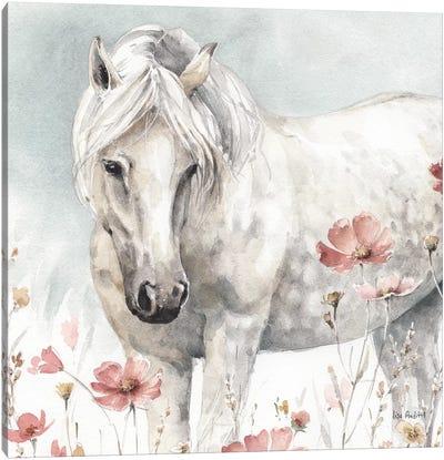Wild Horses V Canvas Art Print