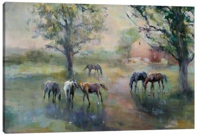 Daybreak On The Farm Crop II Canvas Art Print