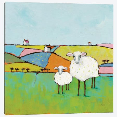 Sheep In The Meadow Canvas Print #WAC9192} by Phyllis Adams Canvas Wall Art