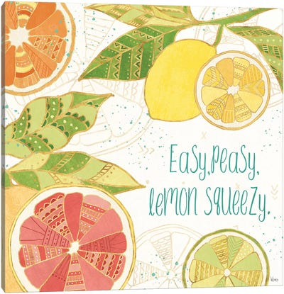 Citrus Splash III Canvas Art Print