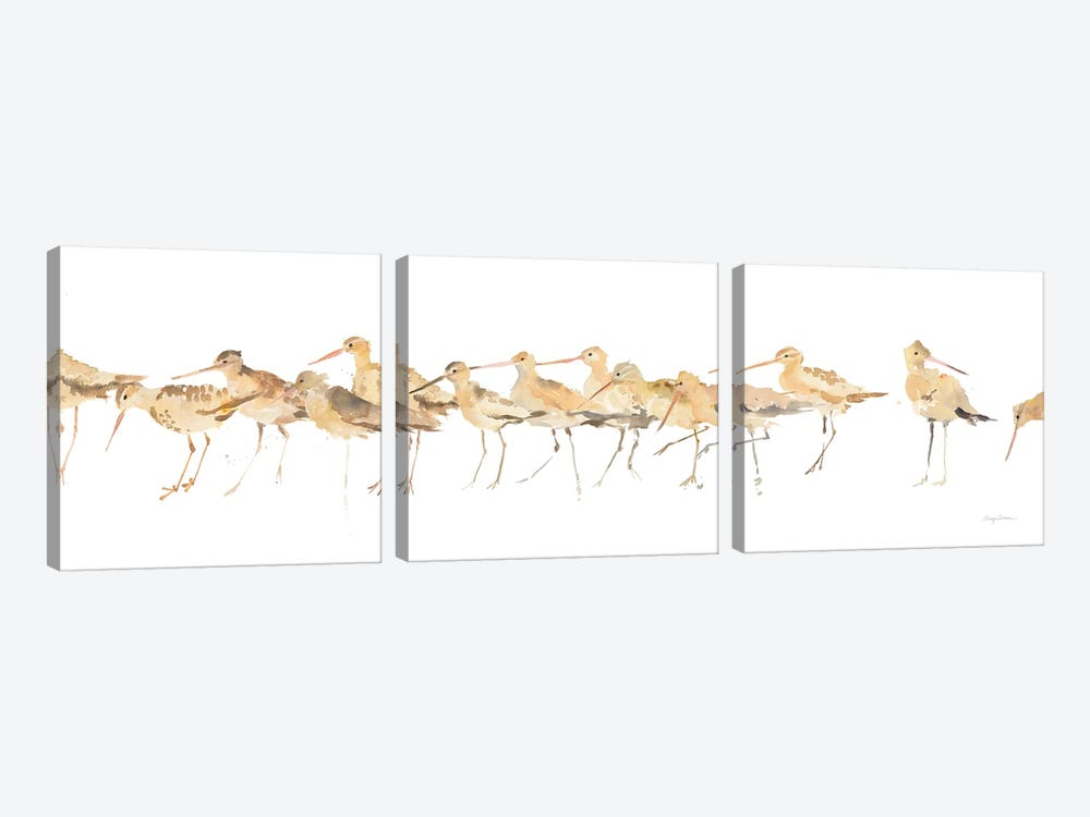 Watercolor Sandpipers by Avery Tillmon 3-piece Canvas Art