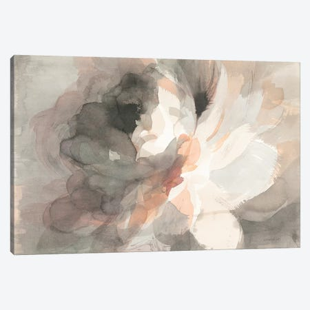 Abstract Peony Canvas Print #WAC9226} by Danhui Nai Canvas Art Print