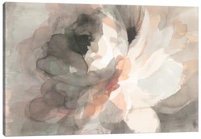 Abstract Peony Canvas Art Print
