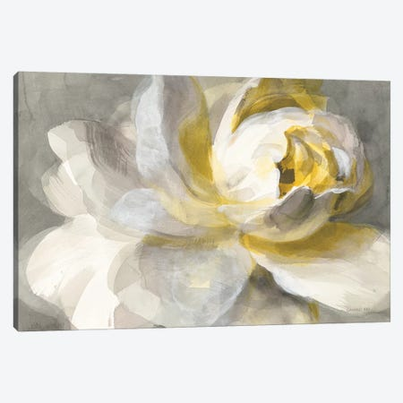 Abstract Rose Canvas Print #WAC9227} by Danhui Nai Art Print