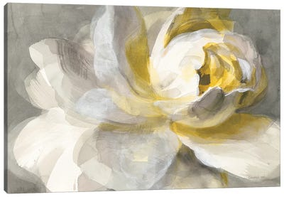 Abstract Rose Canvas Art Print