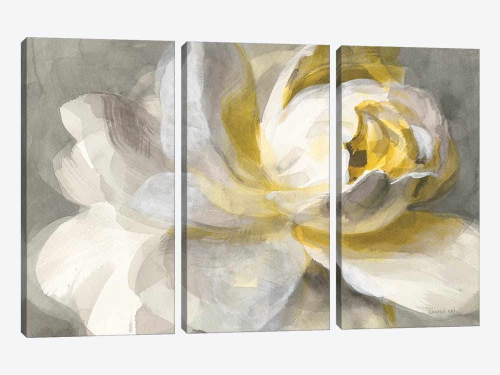 Abstract Rose by Danhui Nai 3-piece Canvas Art Print