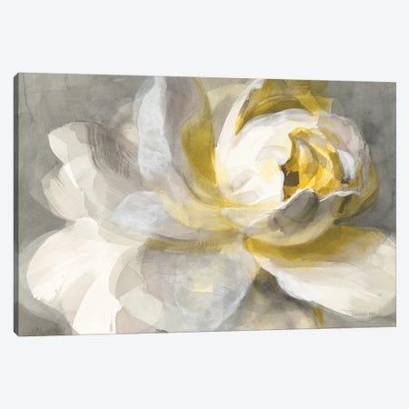 Abstract Rose Canvas Print #WAC9227} by Danhui Nai Art Print