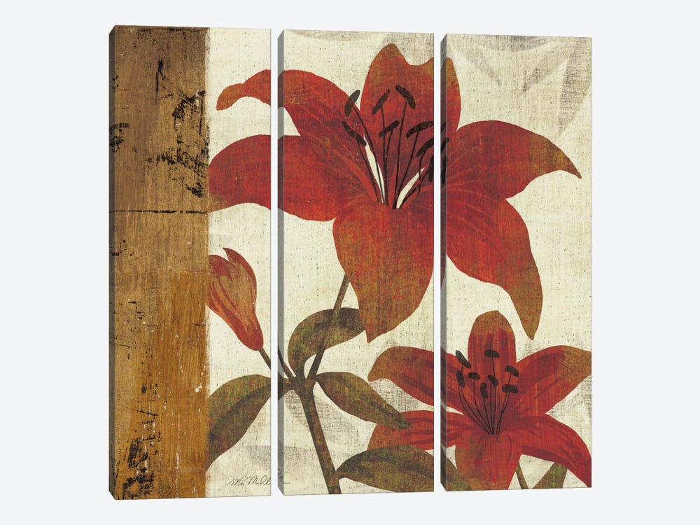 Floral Harmony II by Michael Mullan 3-piece Canvas Print