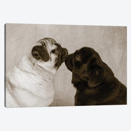 Pooch Smooch 3-Piece Canvas #WAC9247} by Jim Dratfield Canvas Print