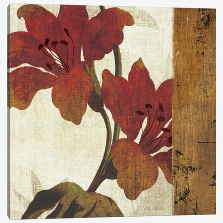 Floral Harmony III Canvas Print #WAC924} by Michael Mullan Canvas Art