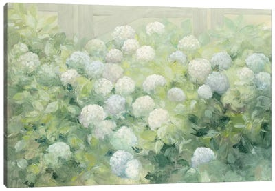 Hydrangea Lane Canvas Art Print