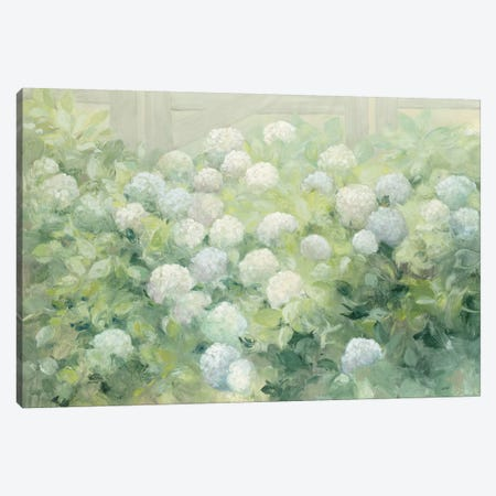 Hydrangea Lane Canvas Print #WAC9250} by Julia Purinton Canvas Art Print