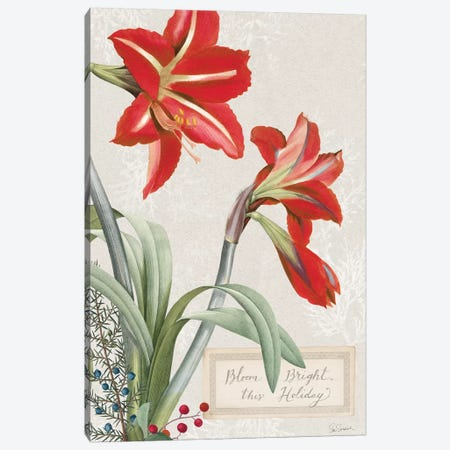 Joyful Tidings VIII Canvas Print #WAC9257} by Sue Schlabach Canvas Artwork