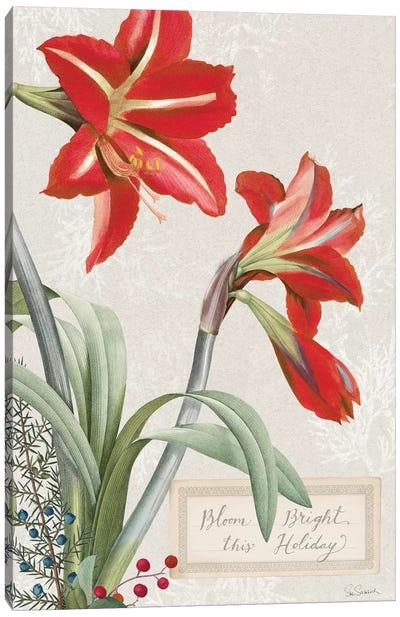 Joyful Tidings VIII Canvas Art Print