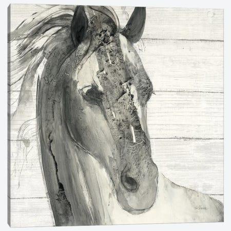 In The Wind I Shiplap Canvas Print #WAC9272} by Albena Hristova Canvas Print
