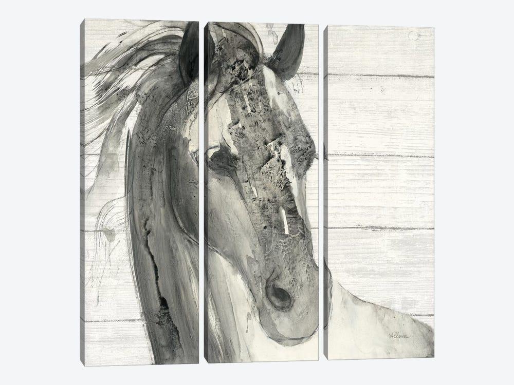 In The Wind I Shiplap by Albena Hristova 3-piece Canvas Art Print