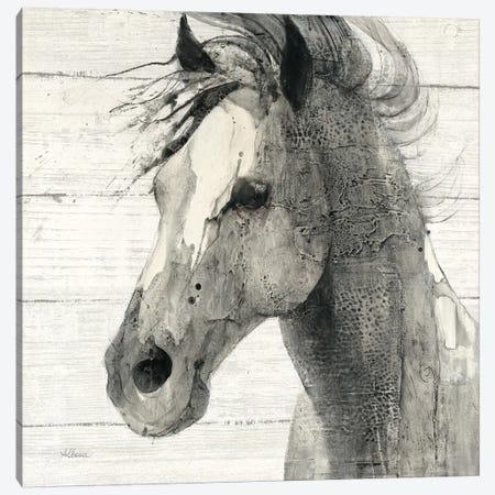 In The Wind II Shiplap Canvas Print #WAC9273} by Albena Hristova Art Print
