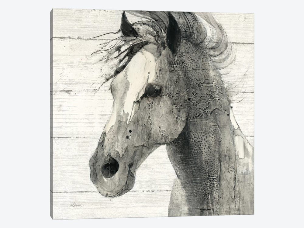 In The Wind II Shiplap by Albena Hristova 1-piece Canvas Artwork