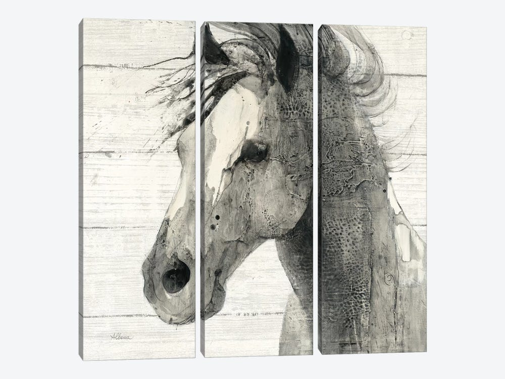 In The Wind II Shiplap by Albena Hristova 3-piece Canvas Artwork