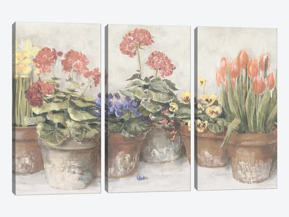 Spring In The Greenhouse Neutral by Carol Rowan 3-piece Canvas Wall Art