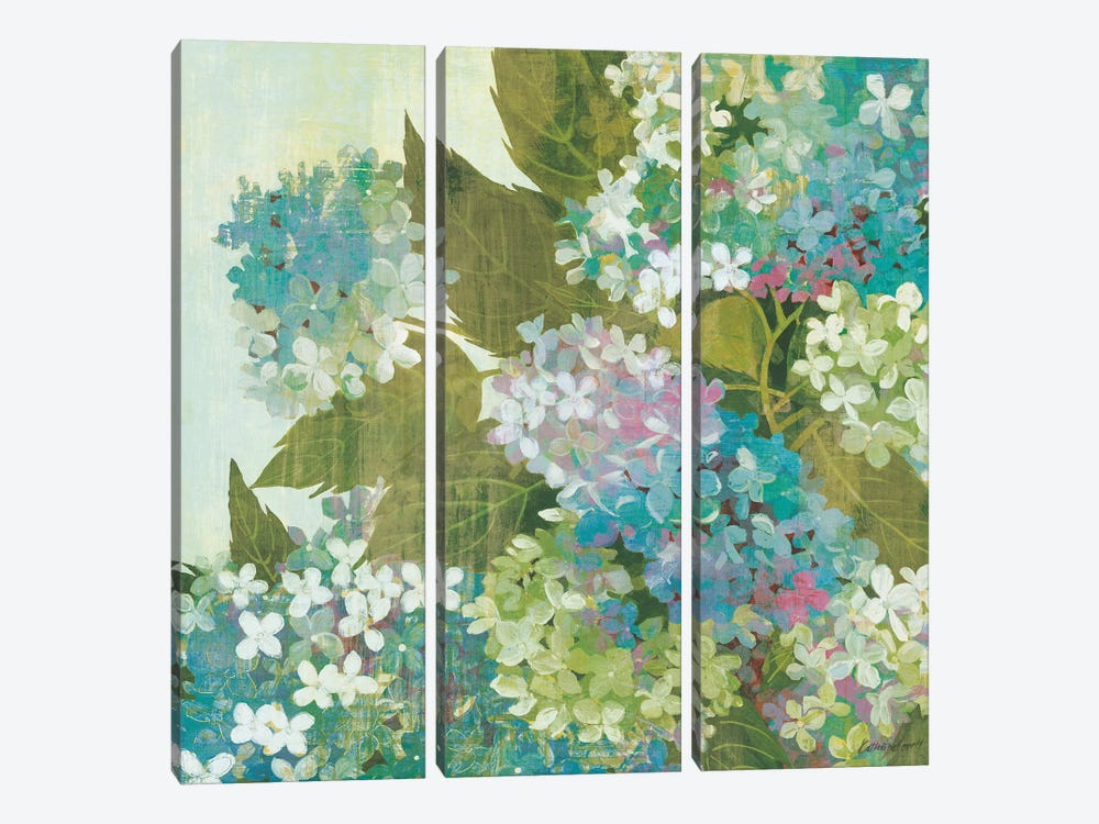 Grandiflora Bloom by Kathrine Lovell 3-piece Art Print