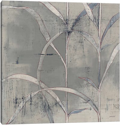 In The Garden III Gray Canvas Art Print