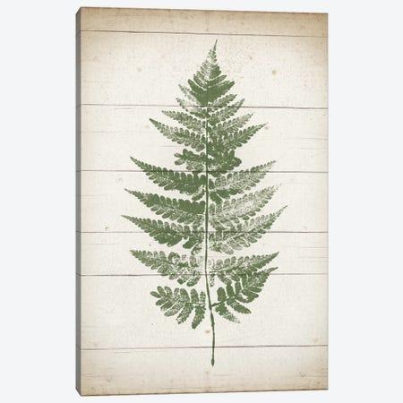 Fern Print I Canvas Print #WAC9386} by Moira Hershey Canvas Artwork