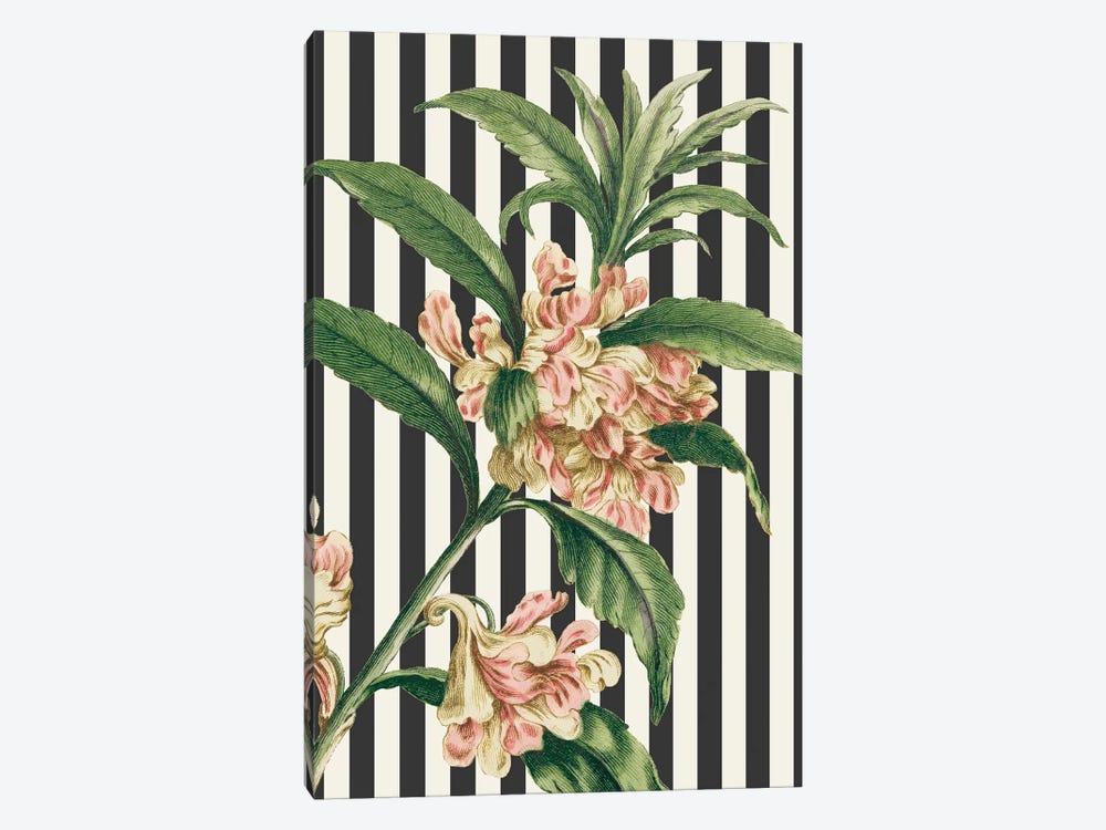 Herbal Botanical XXVI Bold by Wild Apple Portfolio 1-piece Canvas Wall Art