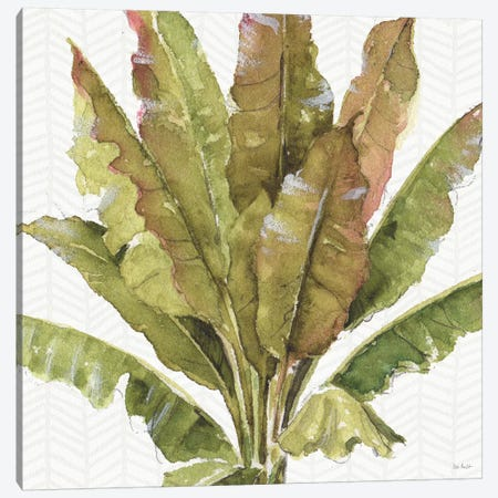 Mixed Greens VII Canvas Print #WAC9416} by Lisa Audit Canvas Wall Art