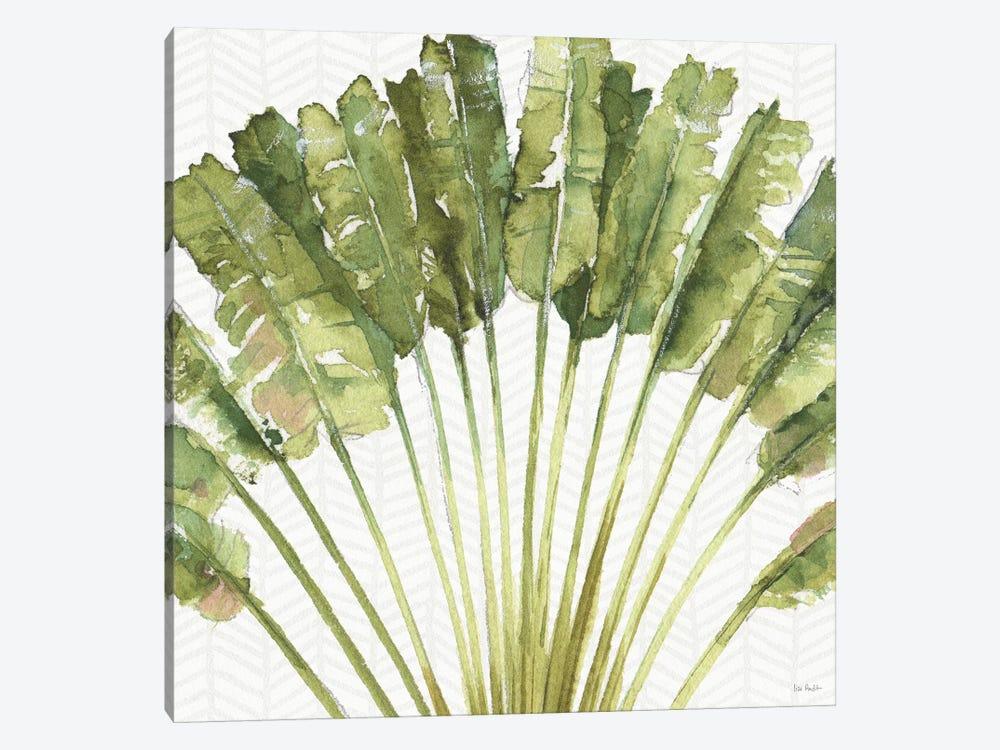 Mixed Greens VIII by Lisa Audit 1-piece Canvas Art