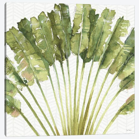 Mixed Greens VIII Canvas Print #WAC9417} by Lisa Audit Canvas Wall Art