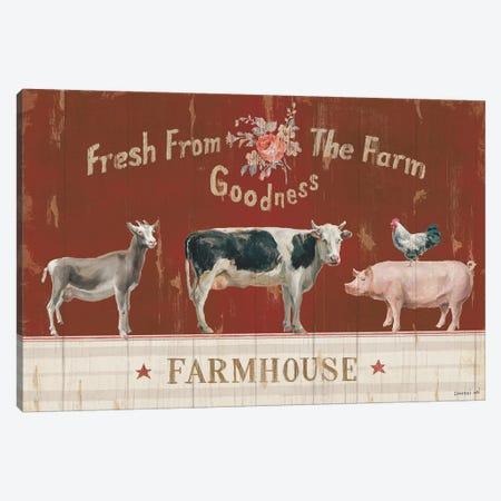 Farm Patchwork II Canvas Print #WAC9425} by Danhui Nai Art Print