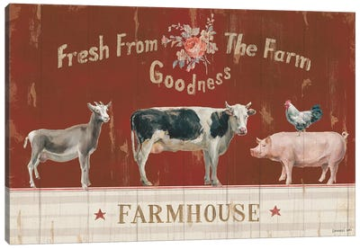 Farm Patchwork II Canvas Art Print