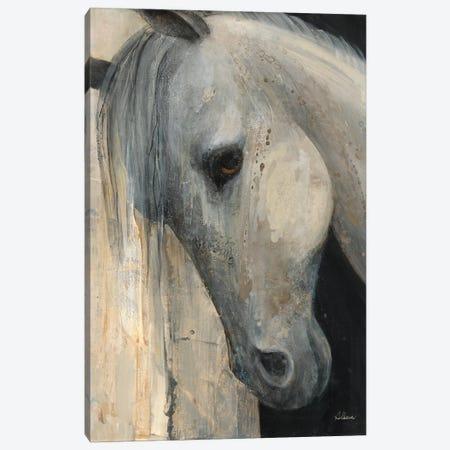 Beauty Canvas Print #WAC9523} by Albena Hristova Canvas Art Print