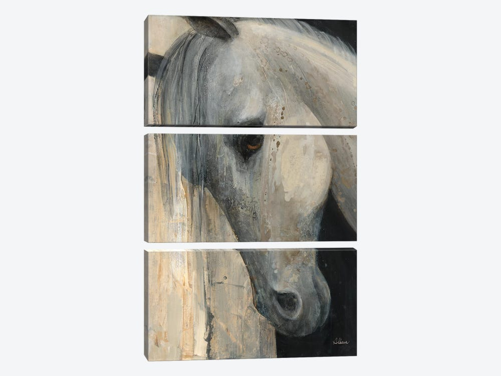 Beauty by Albena Hristova 3-piece Canvas Art
