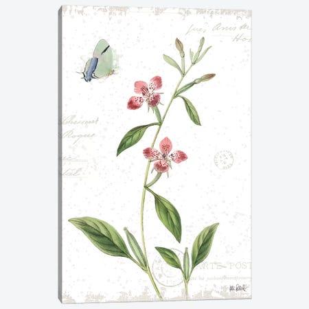 Spring Fields II Canvas Print #WAC9540} by Katie Pertiet Art Print