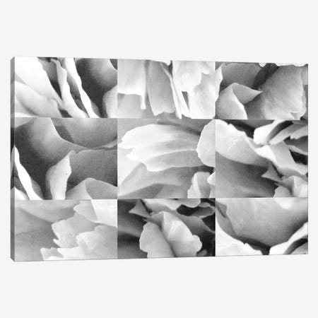 Dreamy Peony Collage Canvas Print #WAC9556} by Wild Apple Portfolio Art Print