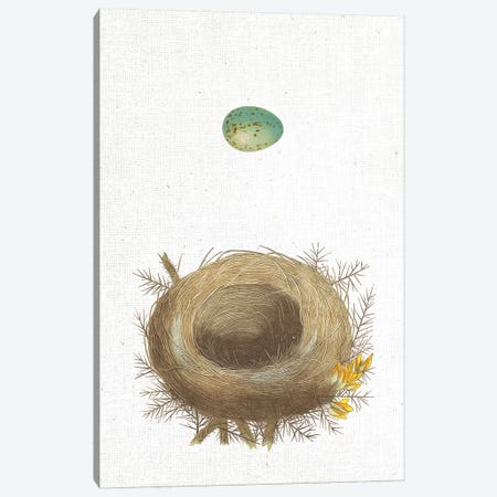 Spring Nest I Canvas Print #WAC9557} by Wild Apple Portfolio Art Print