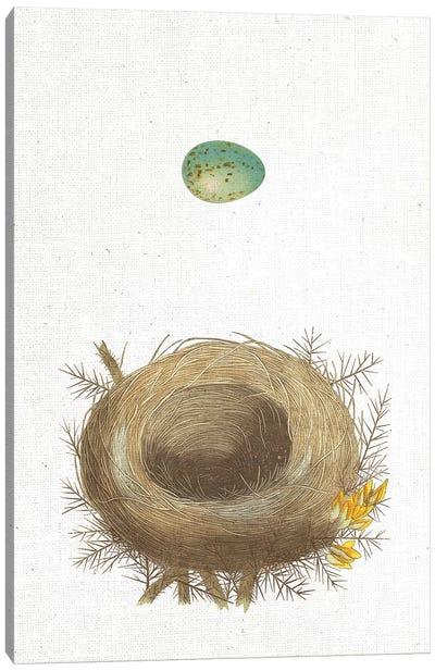 Spring Nest I Canvas Art Print