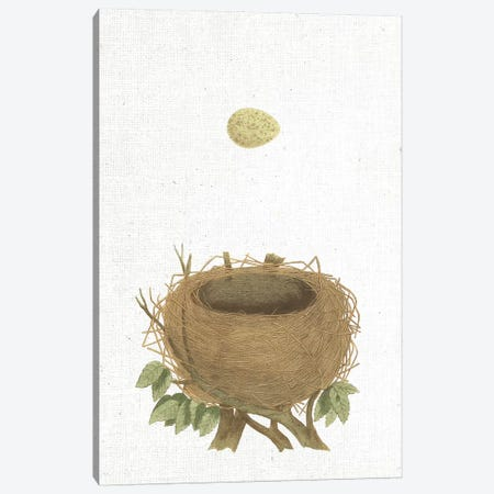 Spring Nest II Canvas Print #WAC9558} by Wild Apple Portfolio Canvas Art