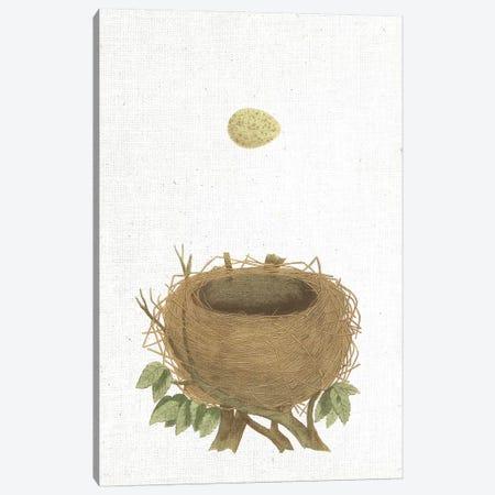 Spring Nest II Canvas Print #WAC9558} by Wild Apple Portfolio Canvas Art