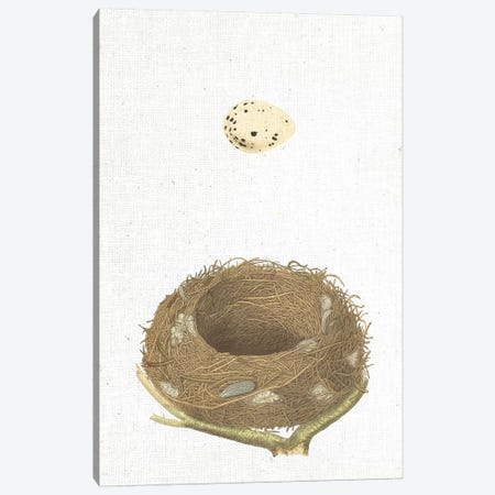 Spring Nest III Canvas Print #WAC9559} by Wild Apple Portfolio Canvas Wall Art