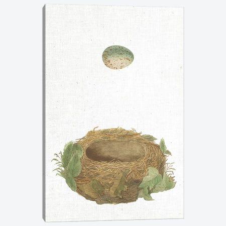 Spring Nest IV Canvas Print #WAC9560} by Wild Apple Portfolio Canvas Art Print