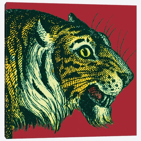 Jungle Flair I Canvas Print #WAC9573} by Wild Apple Portfolio Canvas Wall Art