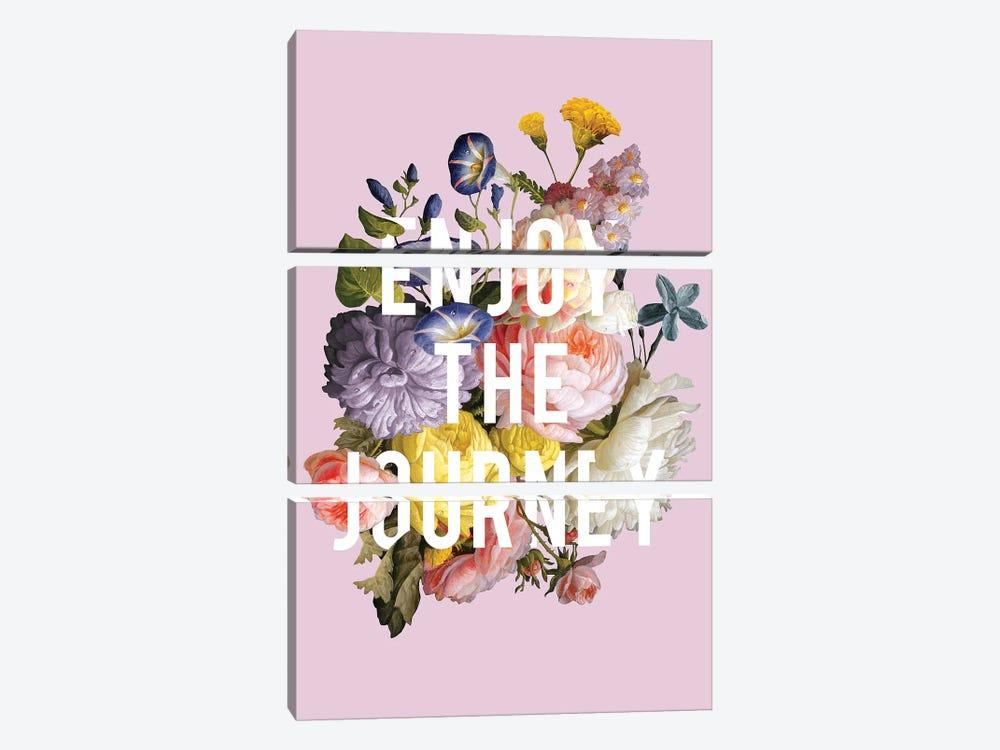 Floral Sentiment II by Wild Apple Portfolio 3-piece Canvas Artwork