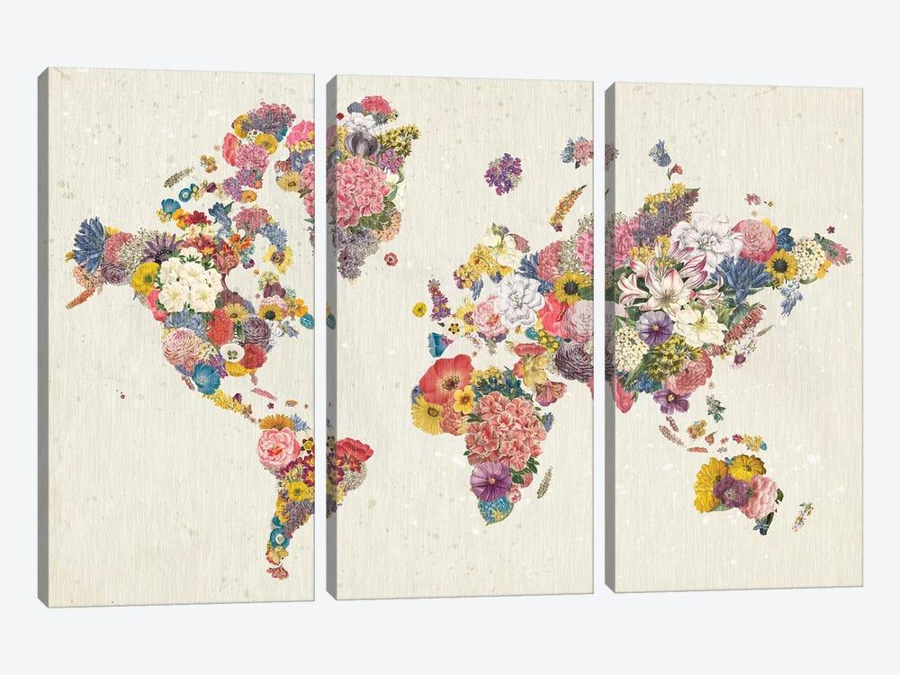 Botanical Floral Map Light by Wild Apple Portfolio 3-piece Canvas Artwork