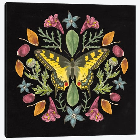 Butterfly Mandala III Black Canvas Print #WAC9660} by Wild Apple Portfolio Canvas Wall Art