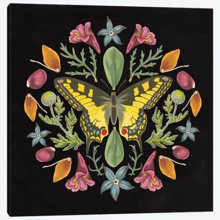 Butterfly Mandala III Black Canvas Print #WAC9660} by Wild Apple Portfolio Canvas Wall Art
