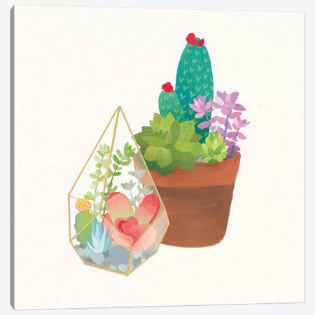 Succulent Garden I Canvas Print #WAC9672} by Wild Apple Portfolio Art Print